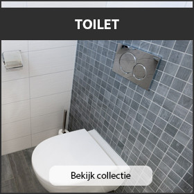 Mozaiek toilet